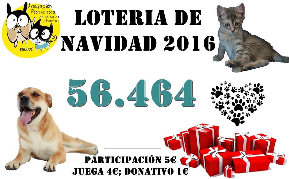cartel-loteria